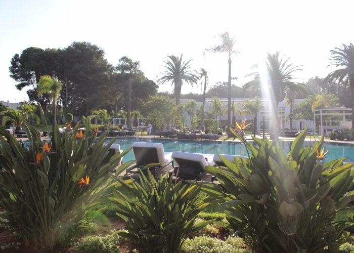 rabat-voyage-sofitel-jardin-des-roses-piscine-13
