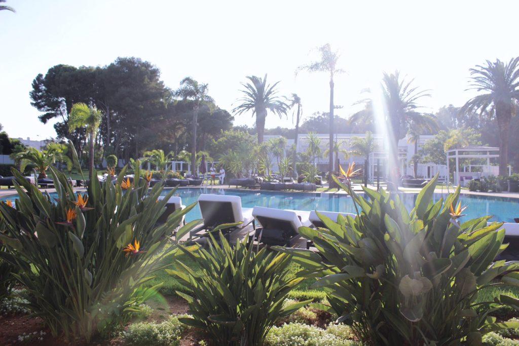 rabat-voyage-sofitel-jardin-des-roses-piscine-6