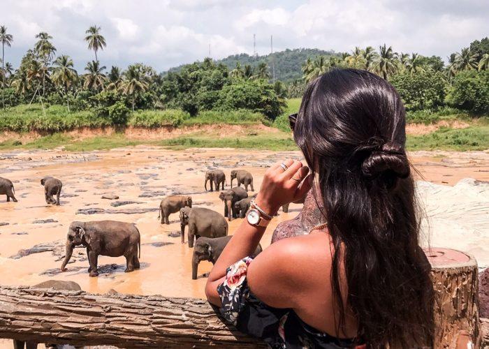 guide-voyage-sri-lanka-Anuradhapura-day1-