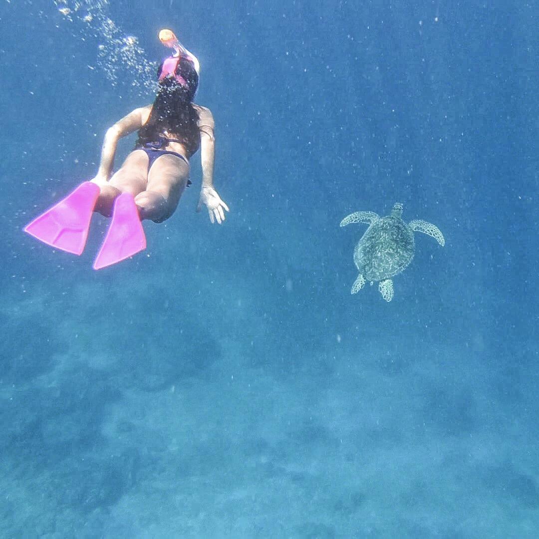 el-nido-island-hopping-guide-voyage-philippines-bateau-speed-boat-5