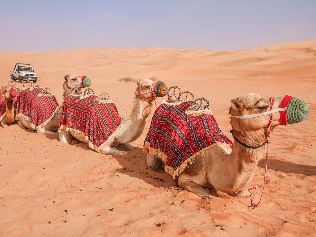 abu-dhabi-anantara-desert-hotel-luxry-10