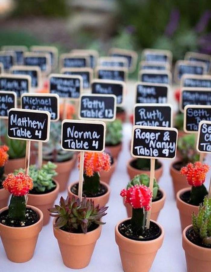 Se-servir-des-mini-cactus-offerts-aux-invites-pour-decorer-la-table-de-mariage