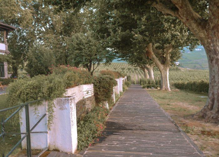portugal-quinta-da-pacheca-douro-valley-1